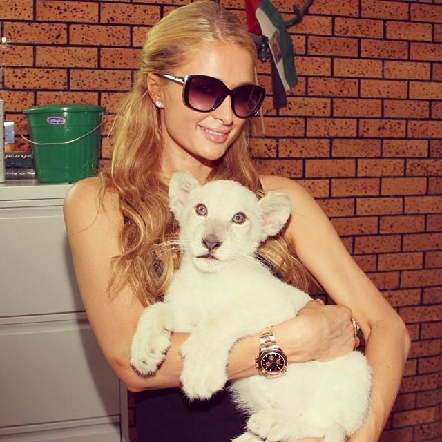 Paris Hilton com leão (Foto: Reprodução/Instagram)