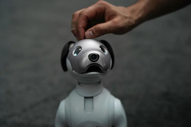 Aibo e outros robôs trazem novas tendências para o cotidiano (Foto: Alex Wong/Getty Images)
