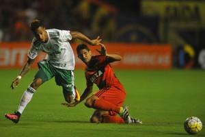 Sport x Palmeiras (Foto: Aldo Carneiro / Pernambuco Press)