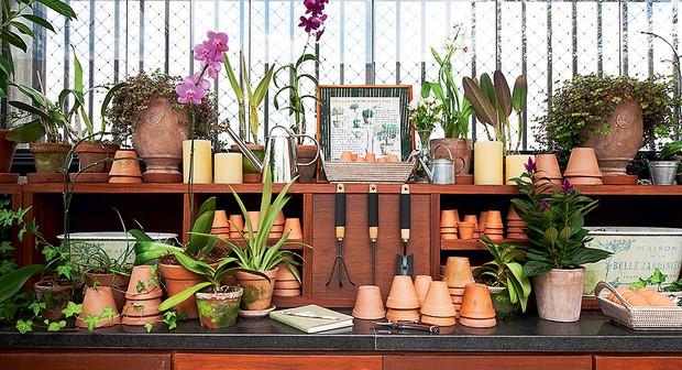 A bancada de granito de 3,4 m de comprimento, feita para a churrasqueira, mostrou-se grande demais. Ao fazer o projeto do jardim, a paisagista Claudia Muñoz deu a ela uma nova função. Nichos de cumaru ganharam vasos cerâmicos, ferramentas e orquídeas (Foto: Lilian Knobel/Casa e Jardim)