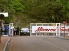 Conselho da Minerva aprova compra do Frisa Frigorífico Rio Doce