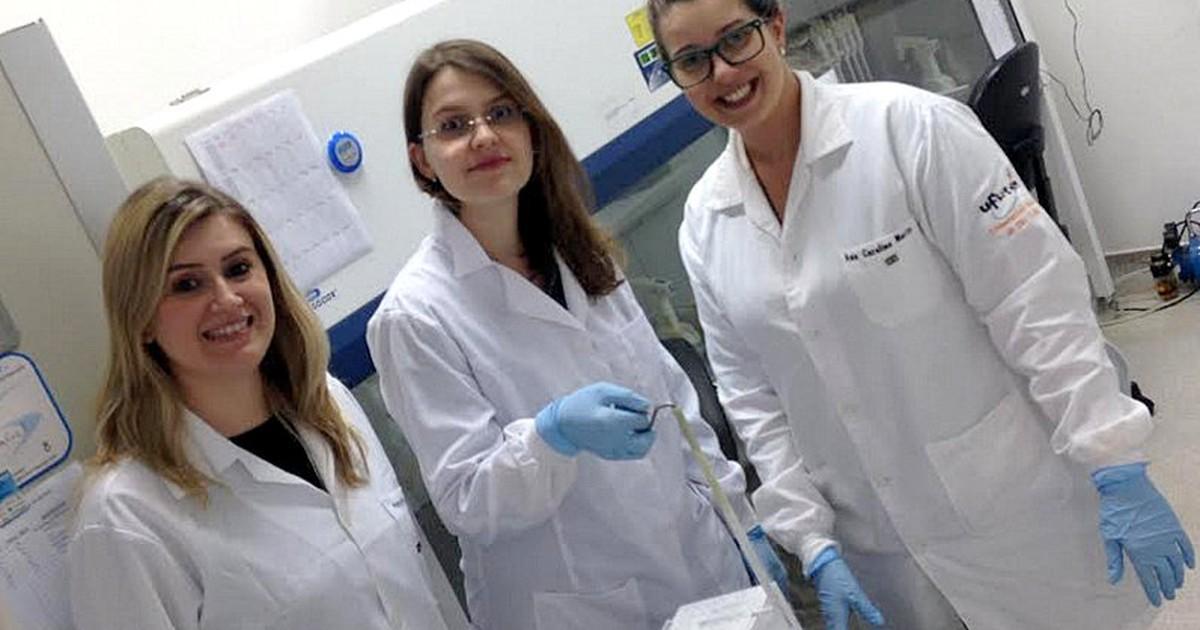 UFSCar testa substância do gengibre que tem potencial para tratar o câncer