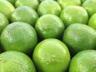 Laranja e limão taiti estão mais em conta, diz Ceagesp