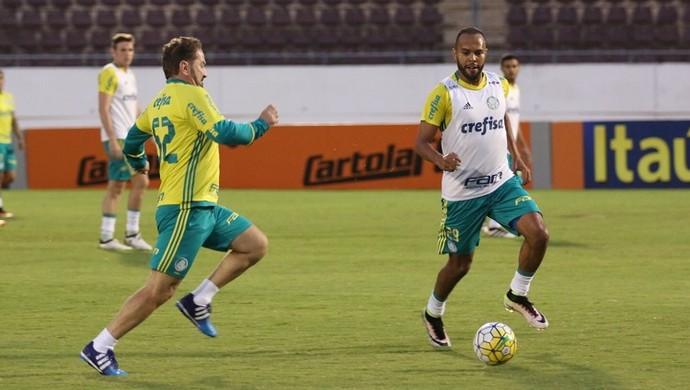 Cuquinha Alecsandro Palmeiras Araraquara (Foto: Cleber Akamine)