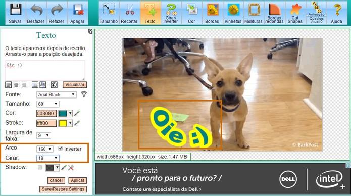Ajuste o estilo curvo ou rotacione o texto no GIF (Foto: Reprodução/Barbara Mannara)