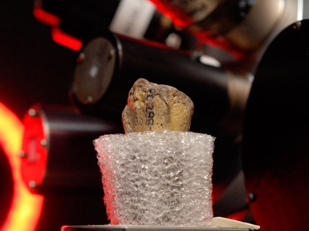Imagem divulgada na segunda (29) mostra fragmento de osso de Lucy sendo submetido a uma tomografia (Foto: Marsha Miller/Nature Publishing Group/AFP)