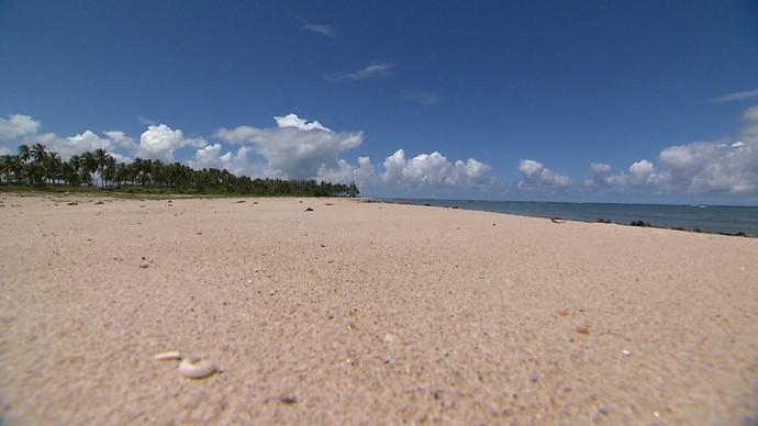 Praia dos Garcez chama a atenção pela diversidade da vegetação (Foto: TV Bahia)