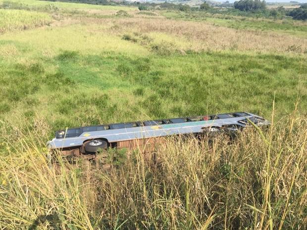 Ônibus bateu na traseira de uma carreta e caiu em um barranco (Foto: PRF/Divulgação)