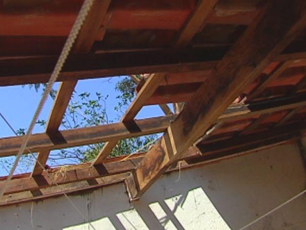 O bezerro atingiu o telhado da casa antes de cair no quintal.  (Foto: reprodução/TV Tem)
