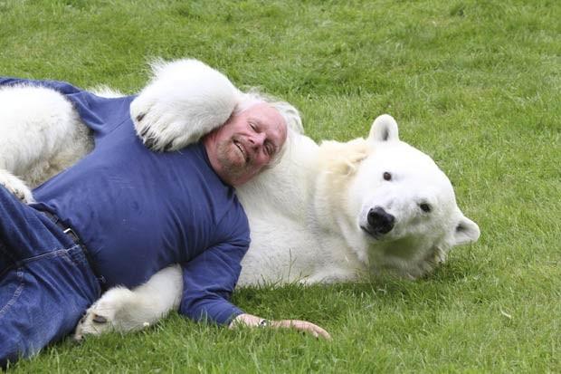 O canadense Mark Dumas mantém amizade com um dos predadores mais perigosos da natureza. Ao lado de Dumas, o urso polar 'Agee', de quase 20 anos, até parece inofensivo (Foto:  Laurentiu Garofeanu/Barcroft USA/Getty Images)