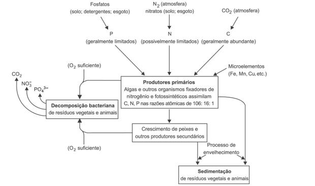 SPIRO, T. G.; STIGLIANI, W. M. Química Ambiental. São Paulo: Pearson Education do Brasil, 2008 (adaptado) (Foto: Reprodução/Enem)