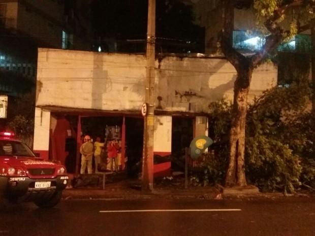 Queda de árvore na Rua São Francisco Xavier corta cabo de energia e bar. Bombeiros isolam o local (Foto: Nicolás Satriano/G1)