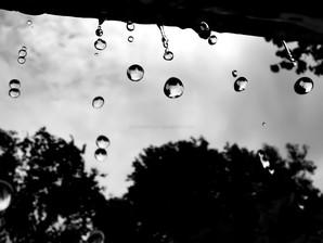 papel de parede chuva