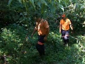 Homem de 81 anos é reencontrado após nove dias na mata em Cabreúva (Foto: Reprodução/TV TEM)