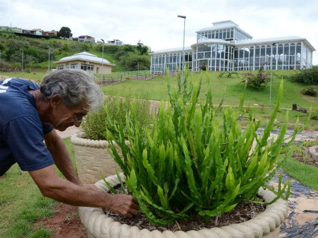 plantas jardim sensorial : plantas jardim sensorial:Mudas foram plantadas em espaço de 150 metros quadrados (Foto: Assis