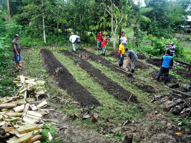 Cursos foram realizados em reserva de desenvolvimento sustentável (Foto: Guedes/IPi)