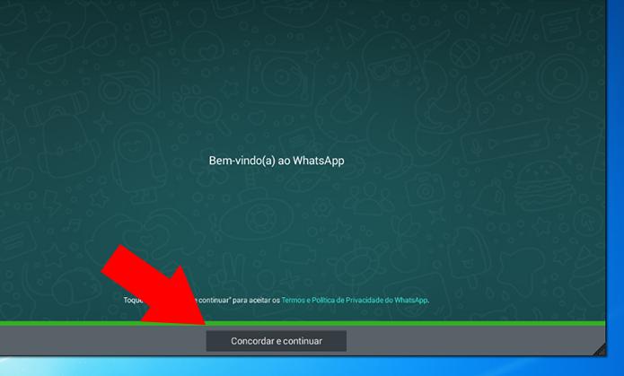 Configure o WhatsApp normalmente (Foto: Reprodução/Paulo Alves)