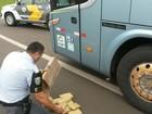 Casal é preso com drogas em ônibus abordado na rodovia de Piratininga