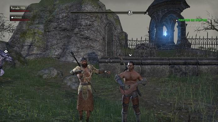 The Elder Scrolls Online é um MMORPG feito para fãs do genero e da icônica franquia (Foto: Reprodução/VIctor Teixeira)