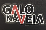 Seja um sócio Galo na Veia (Divulgação / Atlético-MG)