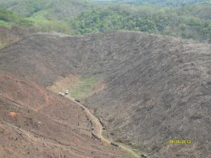 Na Paraíba, em 2010, restavam 756,4 km² de mata atântica. (Foto: Divulgação/Ibama)
