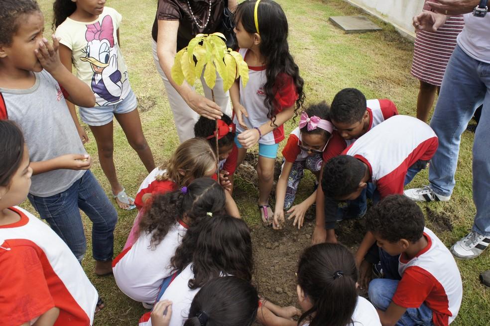 Crianças das escolas municipais estão plantando e apadrinhando as mudas em João Pessoa (Foto: Daniel Sousa/TV Cabo Branco)