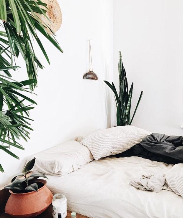 paisagismo-plantas-no-quarto-7 (Foto: Divulgação)