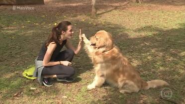 Cães obesos já são mais de 40% no Brasil