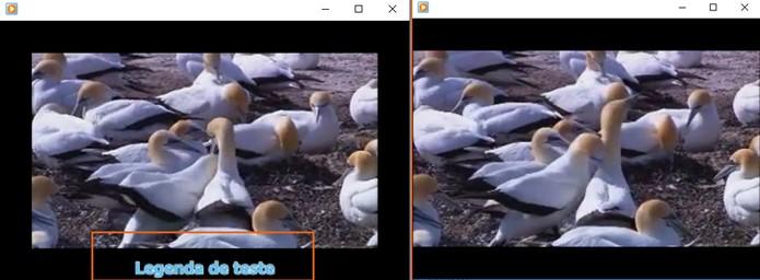 Basta abrir o vídeo que a legenda será carregada automaticamente (Foto: Reprodução/Barbara Mannara)