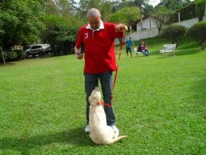 Adestrador com futuro cão-guia (Foto: Divulgação)