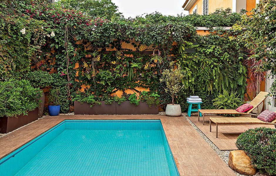 jardim vertical no muro : jardim vertical no muro:Muro verde – Casa e Jardim