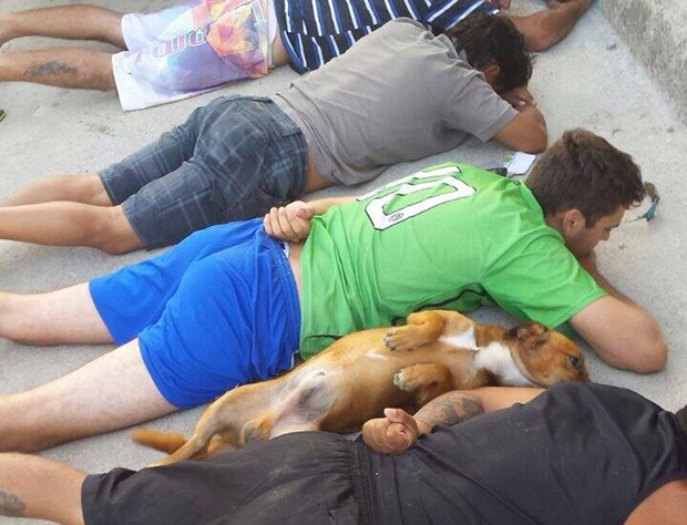 Cão deita ao lado de suspeitos revistados em operação conjunta da Deic e PM (Foto: PMSC/Divulgação)