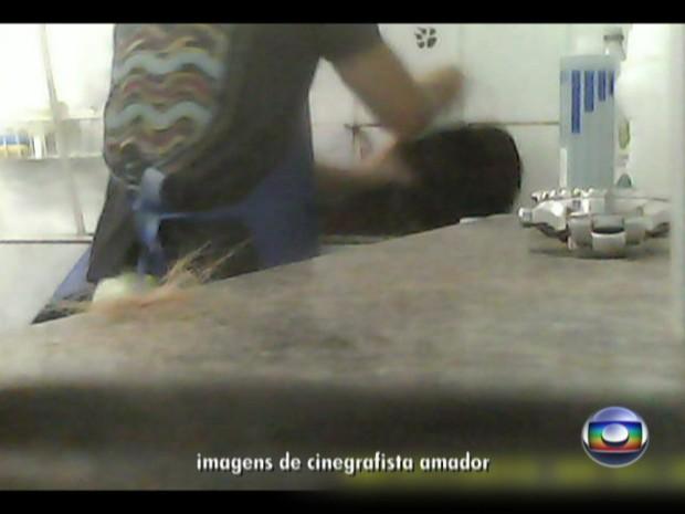 Vídeo mostra flagrante a animal em pet shop no Rio (Foto: Reprodução/TV Globo)