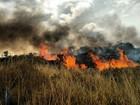 Incêndio na Chapada está 'altamente crítico'; quatro trilhas estão fechadas