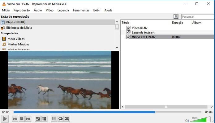 VLC Media Player é completo para rodar vídeos em FLV (Foto: Reprodução/Barbara Mannara)