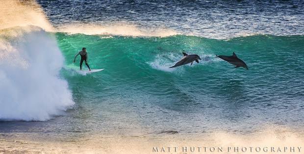Surfista chegou a ser acompanhado por dois golfinhos na mesma onda, em dia de surfe impressionante fotografado na Austrália (Foto: Divulgação/Matt Hutton)