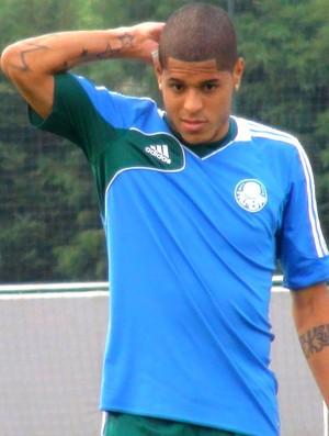 Leandro Treino Palmeiras (Foto: Sergio Gandolphi)