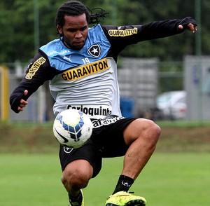 Carlos Alberto Botafogo treino (Foto: Vitor Silva / SSPress)