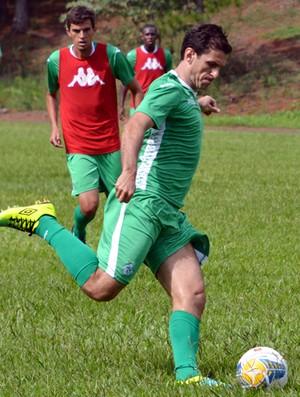 Fumagalli meia Guarani (Foto: José da Cunha / Guarani FC)