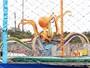 Fantástico investiga responsabilidade de parque em acidente no Maranhão