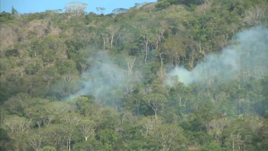 Fogo atinge vegetação e dificulta visibilidade na BR-101, em Alagoas