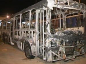 Ônibus da Viação Santo Antônio é queimado após quebrar na BR-070 (Foto: TV Globo/Reprodução)