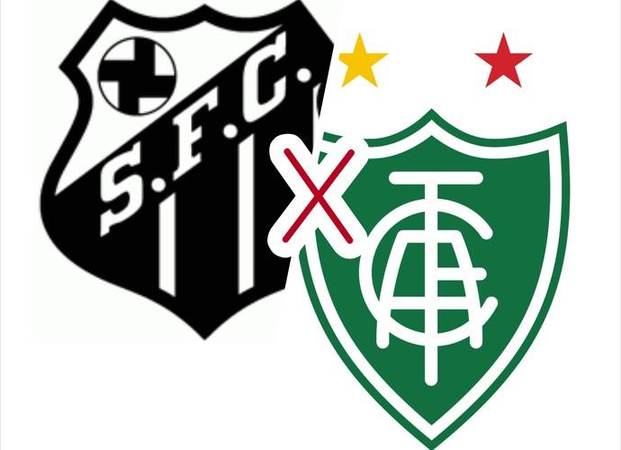 Santos fará jogo de estreia na Copa do Brasil contra o América-MG (Foto: Wellington Costa/GE-AP)