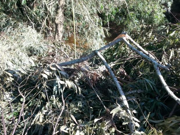 Homens foram encontrados às margens de uma nascente com madeiras cortadas (Foto: Divulgação / Guarda Municipal de Itararé (SP))
