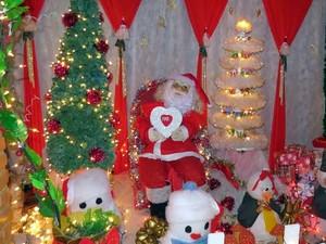 Comerciante colocou nas mãos do Papai Noel mensagem de paz (Foto: Fernanda Zanetti/G1)