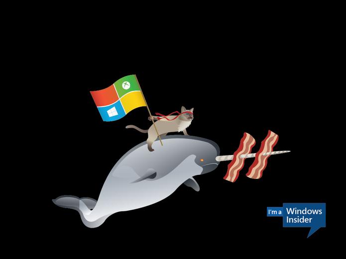 Ninjacar e a baleia (Foto: Reprodução/Microsoft)