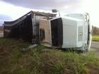 Caminhão carregado com bois tomba em São Vítor e animais sobrevivem