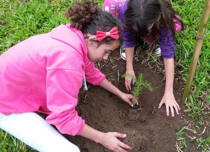 Crianças de Visconde de Mauá plantam mudas com a ajuda dos guardas do Parque Estadual da Pedra Selada (Foto: Rio Sul Revista)