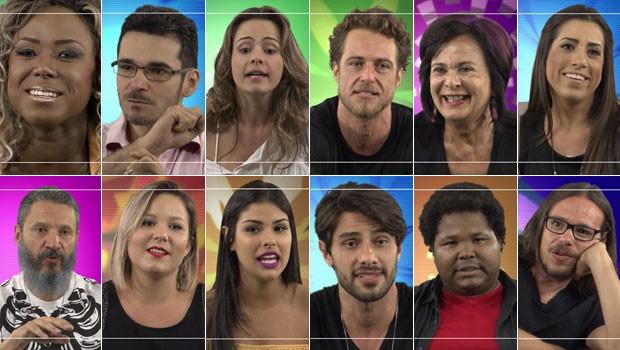 BBB 16 (Foto: Globo)
