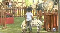 Rancho do Peãozinho reserva atividades para a criançada
